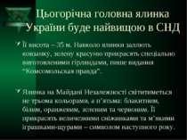 Цьогорічна головна ялинка України буде найвищою в СНД Її висота – 35 м. Навко...