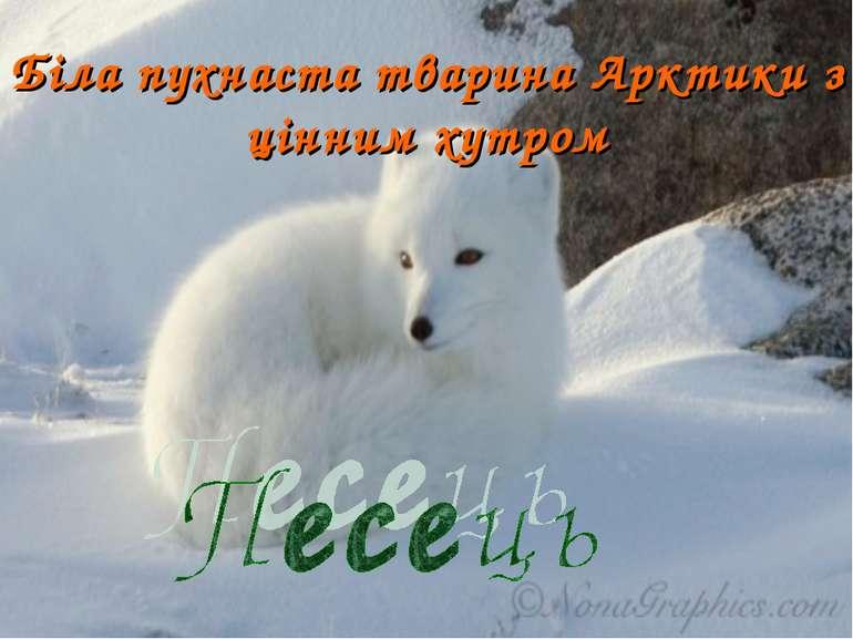 Біла пухнаста тварина Арктики з цінним хутром