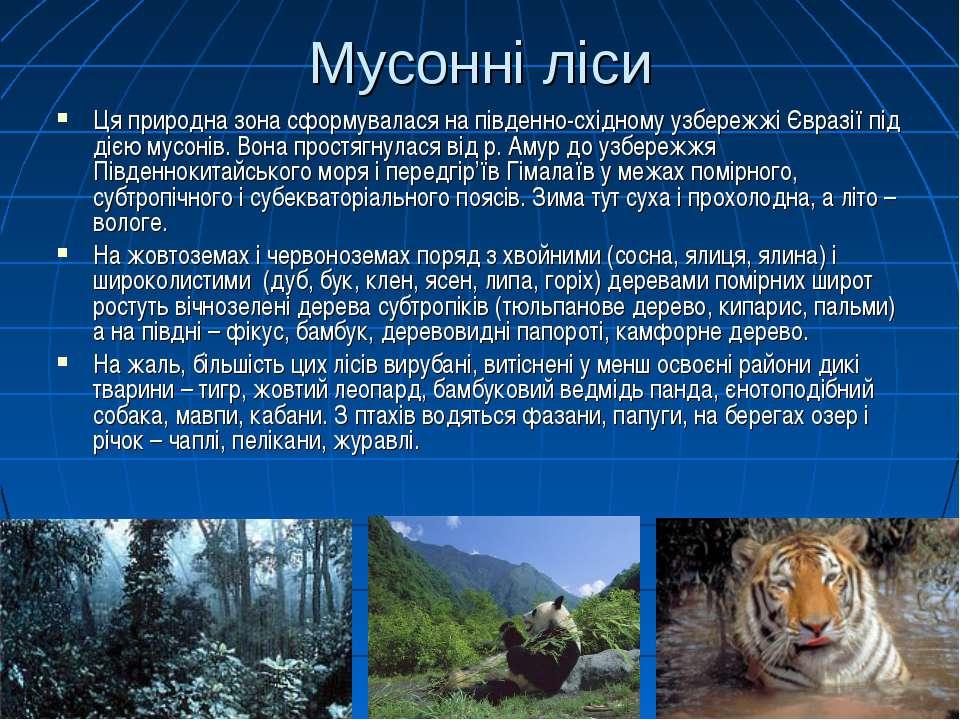Мусонні ліси Ця природна зона сформувалася на південно-східному узбережжі Євр...