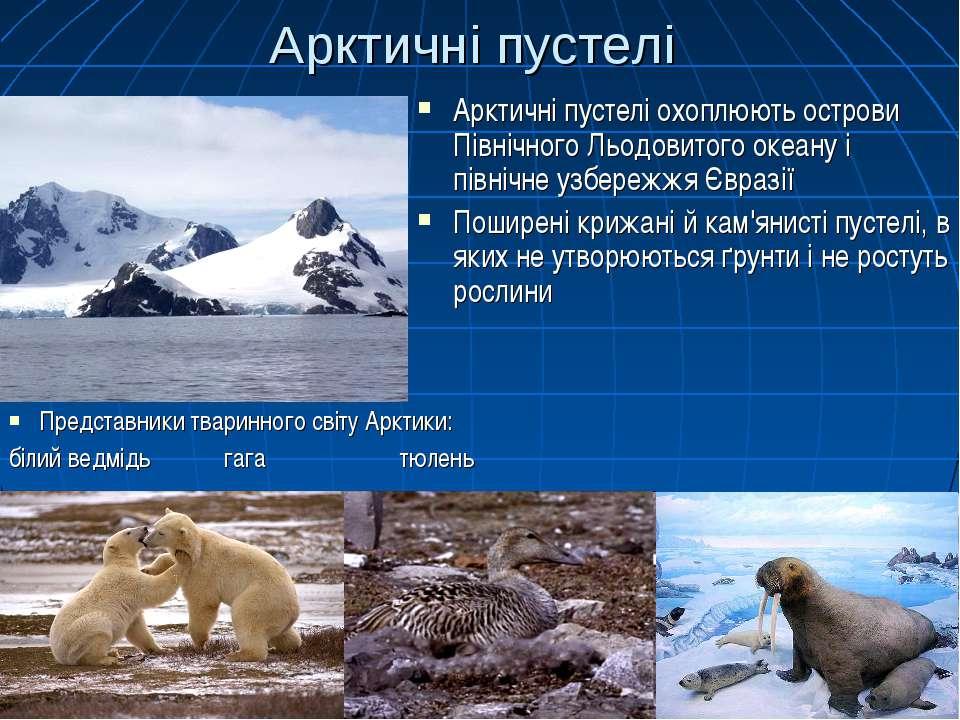Арктичні пустелі Арктичні пустелі охоплюють острови Північного Льодовитого ок...