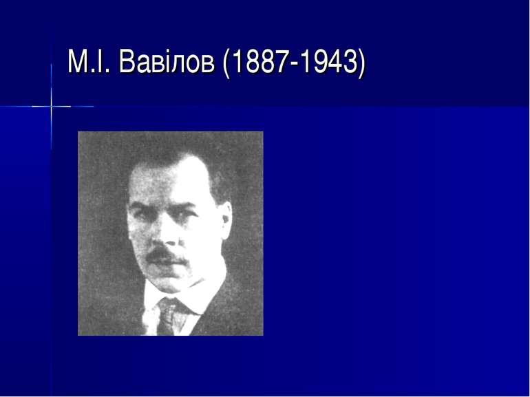 М.І. Вавілов (1887-1943)