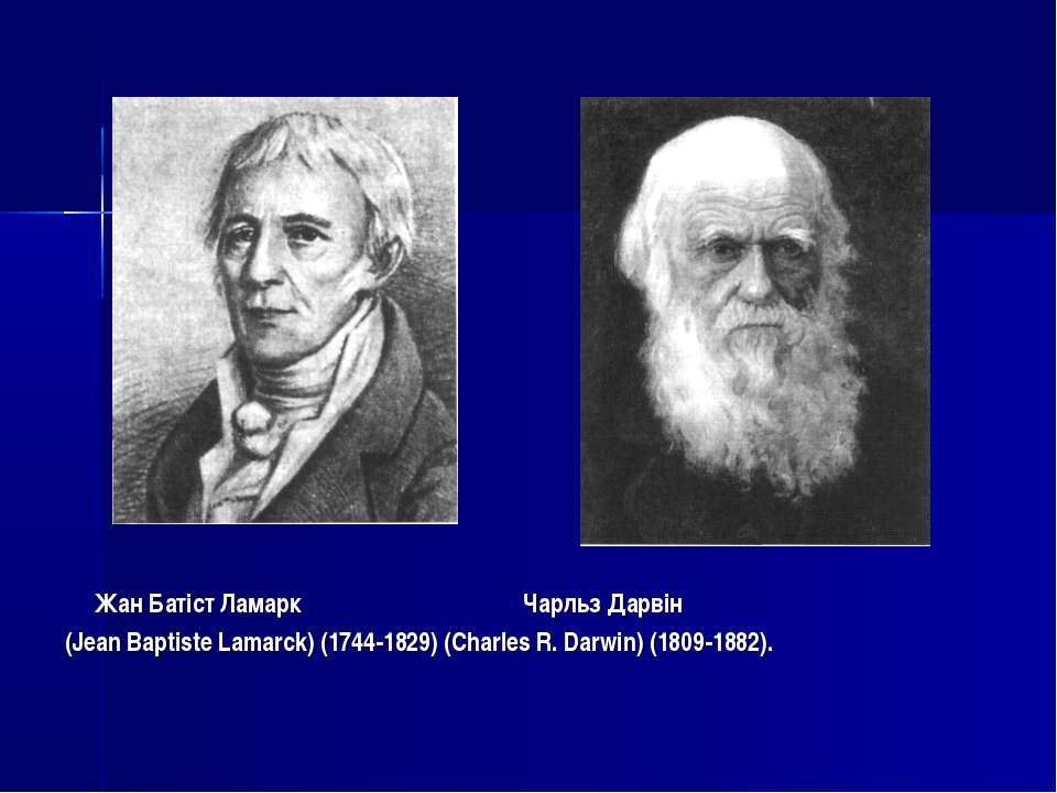 Жан Батіст Ламарк Чарльз Дарвін (Jean Baptiste Lamarck) (1744-1829) (Charles ...