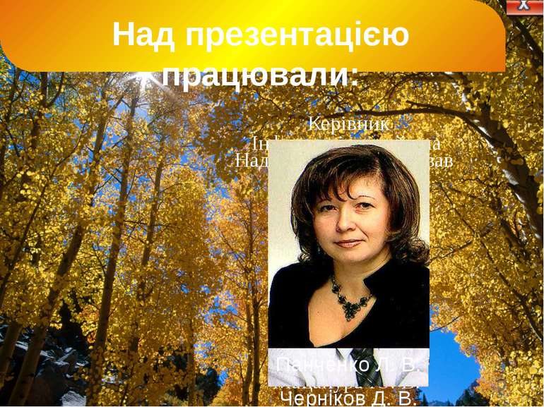 Мацапура Ю. В. Черніков Д. В. Над дизайном працював Інформацію знайшла Панчен...