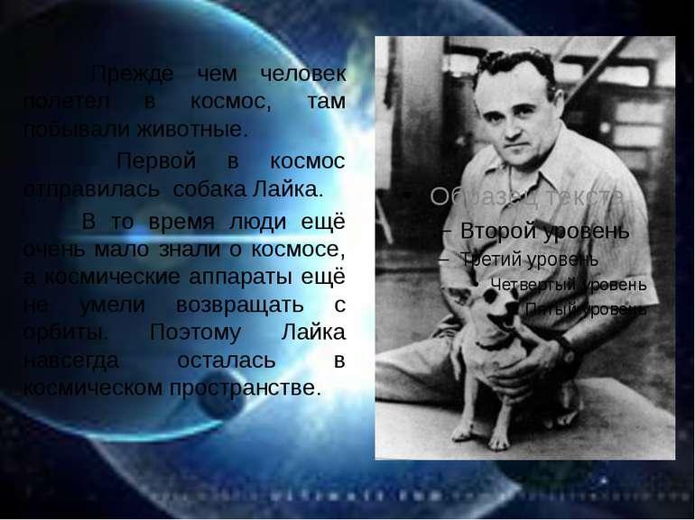 Прежде чем человек полетел в космос, там побывали животные. Первой в космос о...