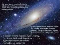 У назвах сузір'їв Павлин, Тукан, Індієць, Пд. Хрест, Райський Птах була відоб...