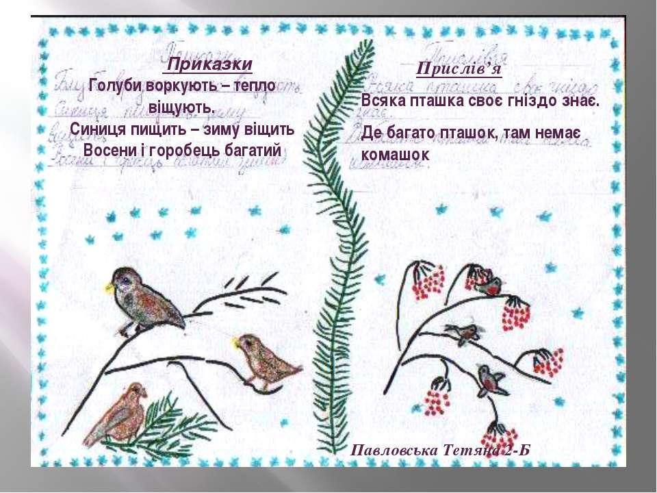 Приказки Голуби воркують – тепло віщують. Синиця пищить – зиму віщить Восени ...