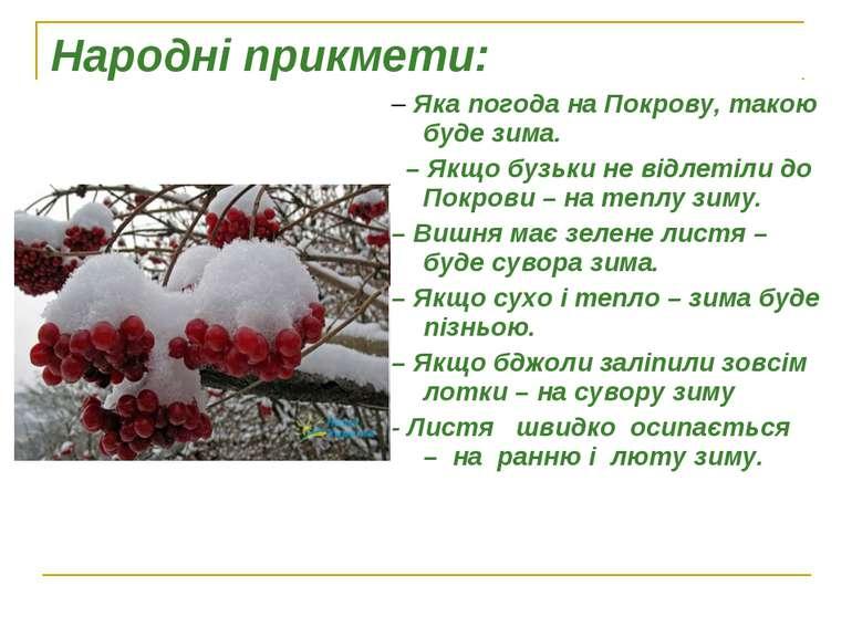 Народні прикмети: – Яка погода на Покрову, такою буде зима.  – Якщо бузьки н...