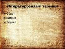 Літературознавчі терміни ● Сонет ● Катрен ● Терцет