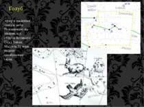Голуб сузір'я південної півкулі неба. Розташоване на південь від сузір'їв Вел...