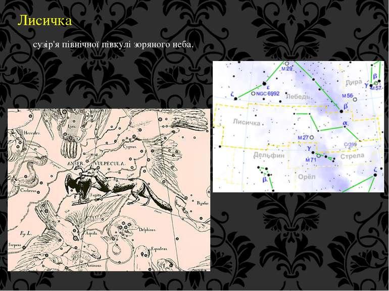 Лисичка сузір'я північної півкулі зоряного неба.