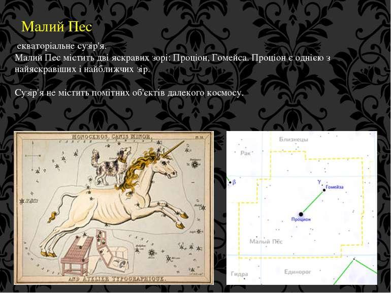 Малий Пес екваторіальне сузір'я. Малий Пес містить дві яскравих зорі: Проціон...