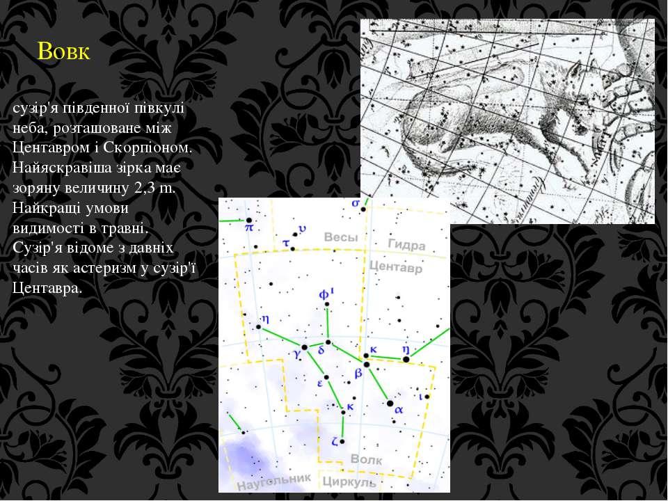 Вовк сузір'я південної півкулі неба, розташоване між Центавром і Скорпіоном. ...