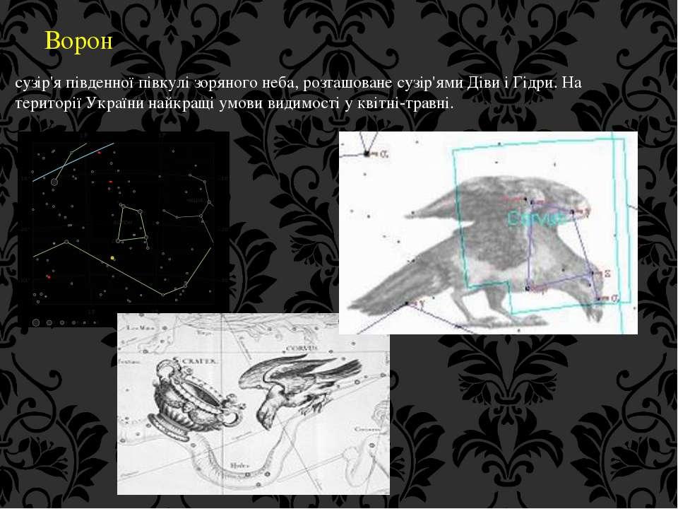 Ворон сузір'я південної півкулі зоряного неба, розташоване сузір'ями Діви і Г...