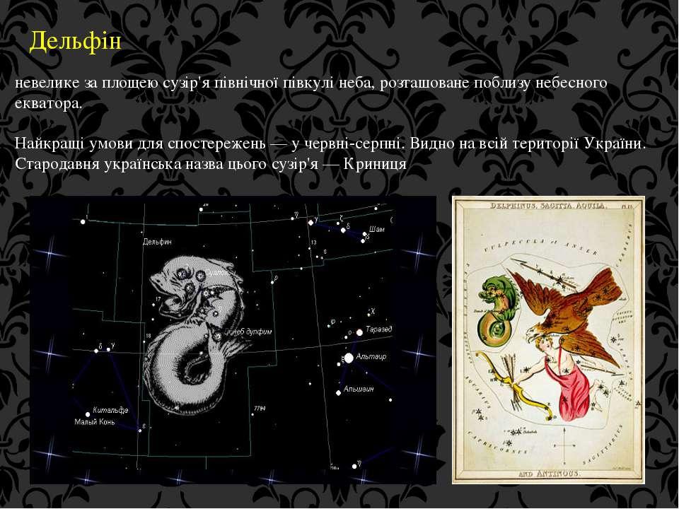 Дельфін невелике за площею сузір'я північної півкулі неба, розташоване поблиз...