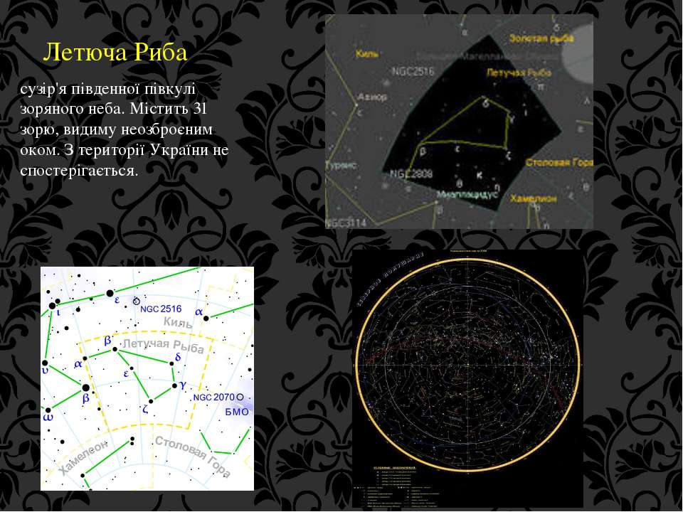Летюча Риба сузір'я південної півкулі зоряного неба. Містить 31 зорю, видиму ...