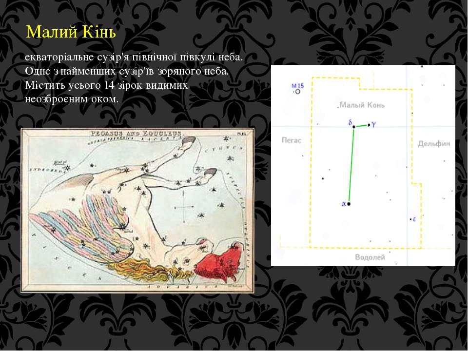 Малий Кінь екваторіальне сузір'я північної півкулі неба. Одне з найменших суз...
