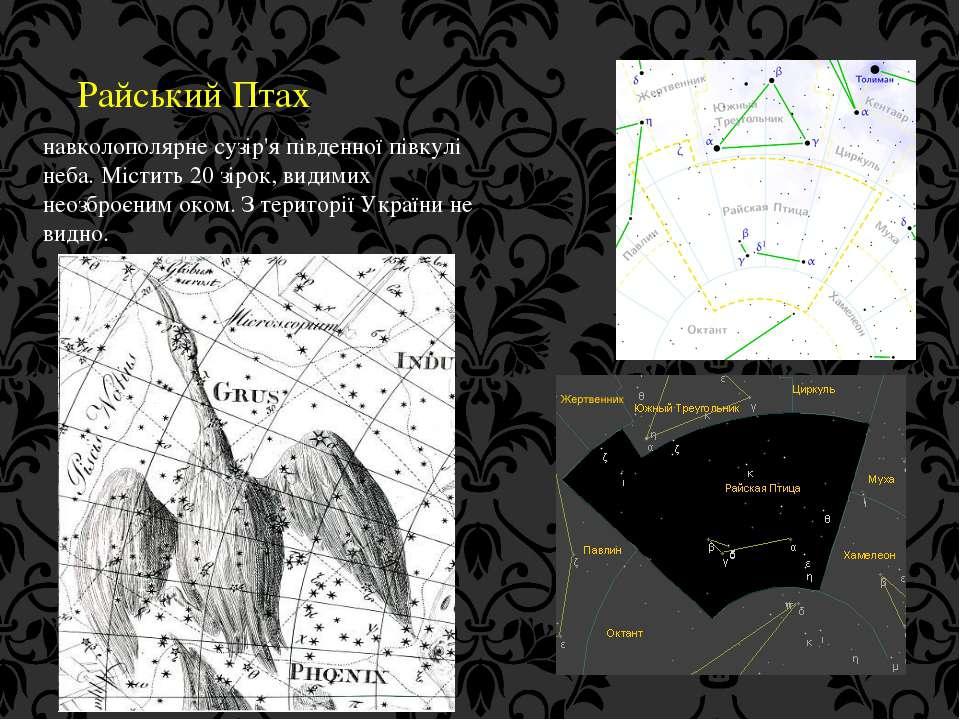 Райський Птах навколополярне сузір'я південної півкулі неба. Містить 20 зірок...