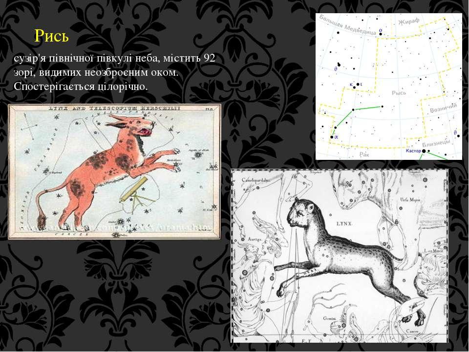 Рись сузір'я північної півкулі неба, містить 92 зорі, видимих неозброєним око...