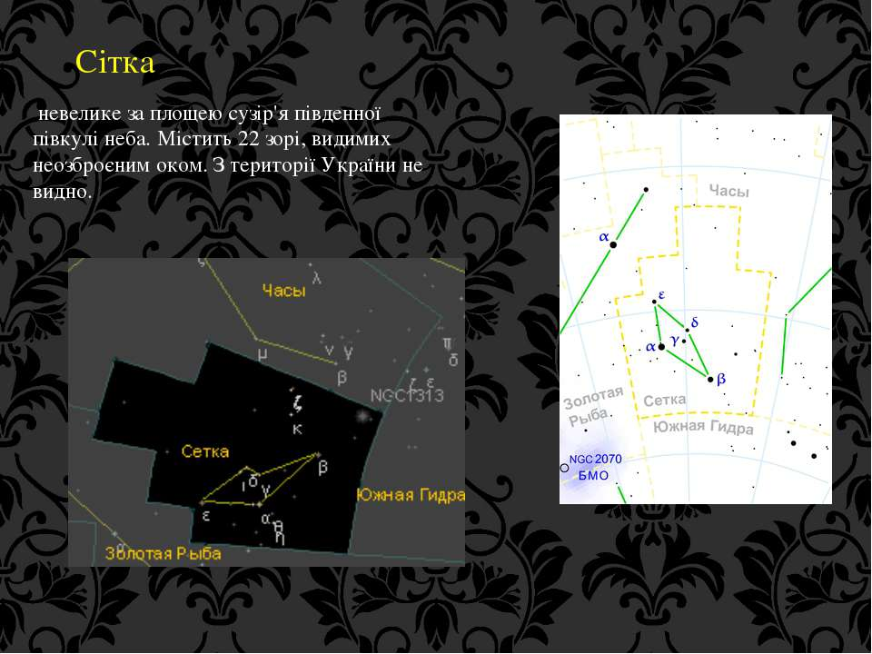 Сітка невелике за площею сузір'я південної півкулі неба. Містить 22 зорі, вид...
