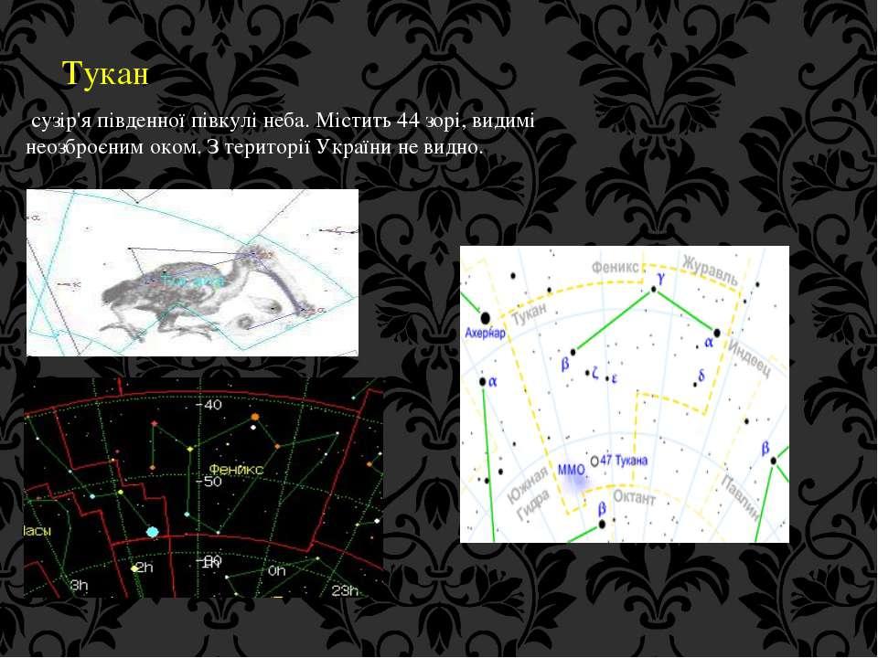 Тукан сузір'я південної півкулі неба. Містить 44 зорі, видимі неозброєним око...