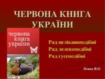ЧЕРВОНА КНИГА УКРАЇНИ Ряд пеліканоподібні Ряд лелекоподібні Ряд гусеподібні Н...