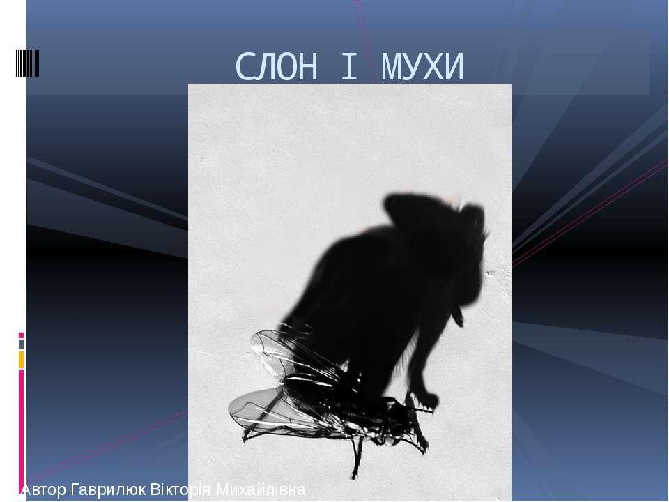 СЛОН І МУХИ Автор Гаврилюк Вікторія Михайлівна