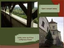 Криті галереї замку Східні стіни та в'їзна надбрамна башта