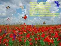 Вже сніп у полі споловів, І став зіркішим дух полину, І червоніють кетяги кал...
