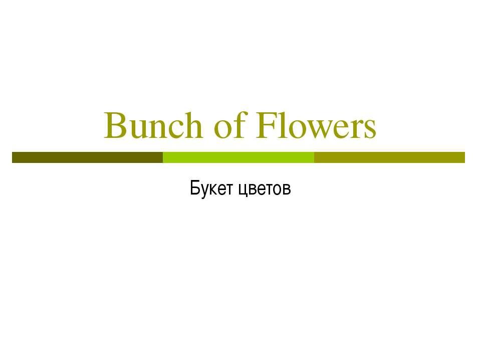 Bunch of Flowers Букет цветов