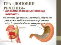 ГРА «ДОПОВНИ РЕЧЕННЯ» Залозами зовнішньої секреції називають ті залози, що ма...