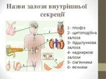 Назви залози внутрішньої секреції 1- гіпофіз 2- щитоподібна залоза 3- підшлун...
