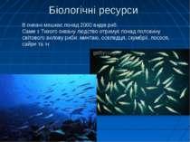 Біологічні ресурси В океані мешкає понад 2000 видів риб. Саме з Тихого океану...