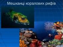 Мешканці коралових рифів