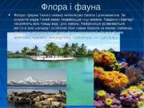 Флора і фауна Флора і фауна Тихого океану неймовірно багата і різноманітна. З...