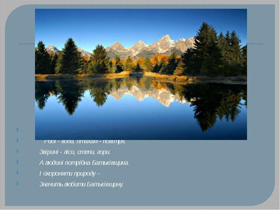 Рибі - вода, птахам - повітря, Звірині - ліси, степи, гори. А людині потрібна...