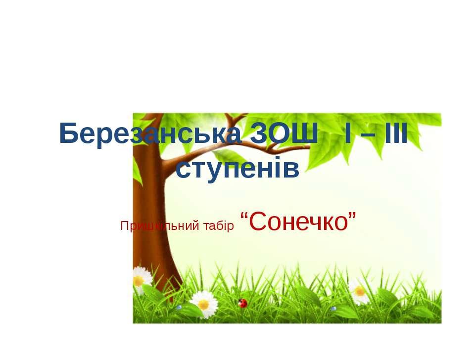 """Березанська ЗОШ І – ІІІ ступенів Пришкільний табір """"Сонечко"""""""