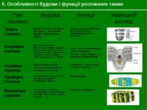 II. Особливості будови і функції рослинних танин Тип тканини Будова Функції З...