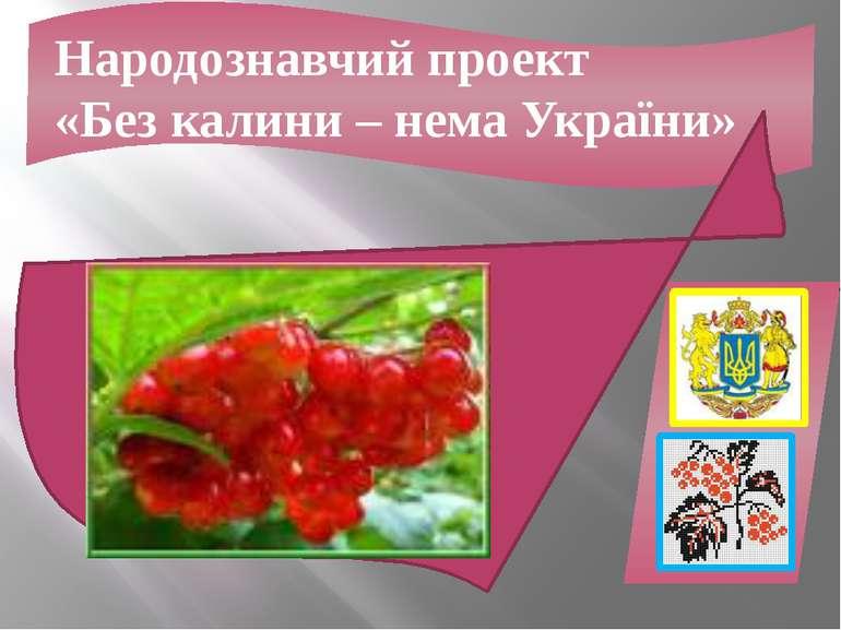 Народознавчий проект «Без калини – нема України»