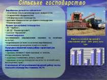 Виробничою діяльністю займаються : • 14 великих сільськогосподарських підприє...