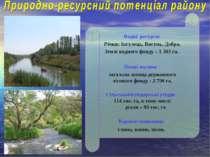 . Водні ресурси: Річки: Інгулець, Висунь, Добра. Землі водного фонду – 1 303 ...