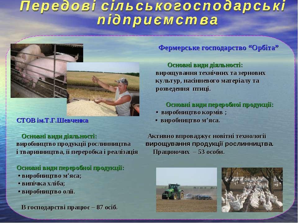 """Фермерське господарство """"Орбіта"""" Основні види діяльності: вирощування технічн..."""