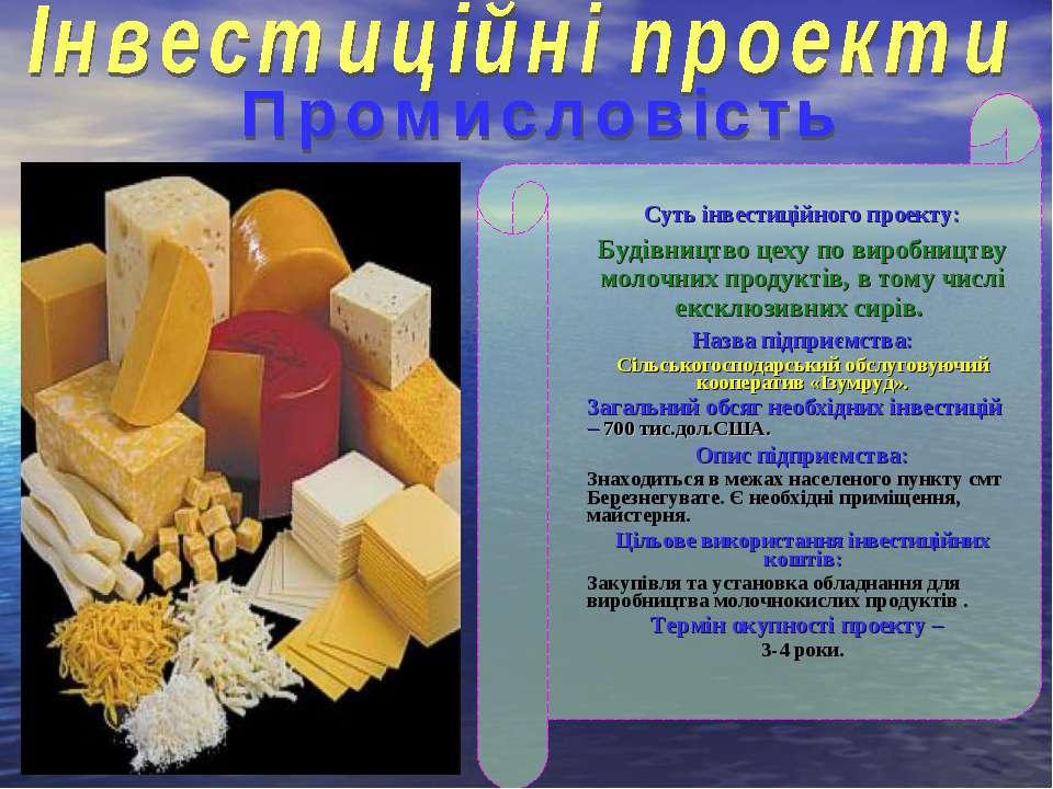 Суть інвестиційного проекту: Будівництво цеху по виробництву молочних продукт...
