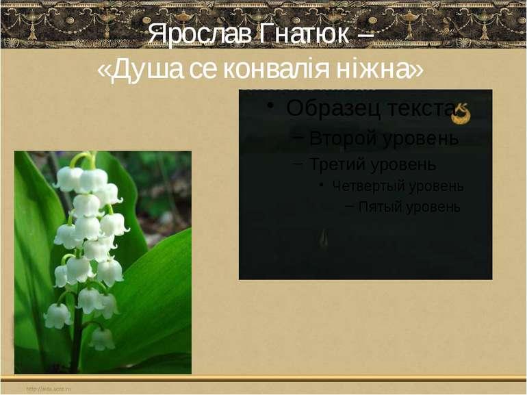 Ярослав Гнатюк – «Душа се конвалія ніжна»