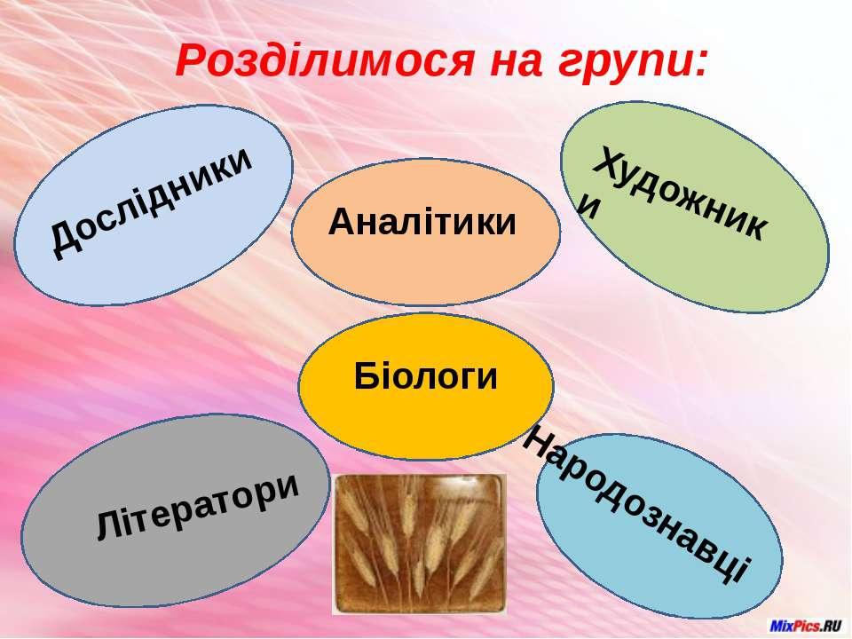 Розділимося на групи: Аналітики Дослідники Художники Літератори Народознавці ...