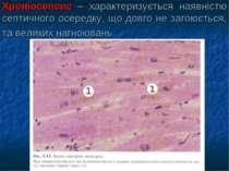 Хроніосепсис – характеризується наявністю септичного осередку, що довго не за...