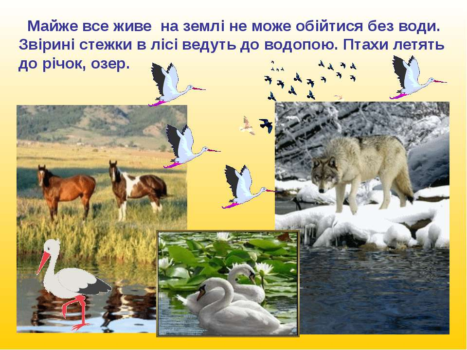 Люди відвіку вибирали собі місце у води, селились по берегах річок, озер, там...