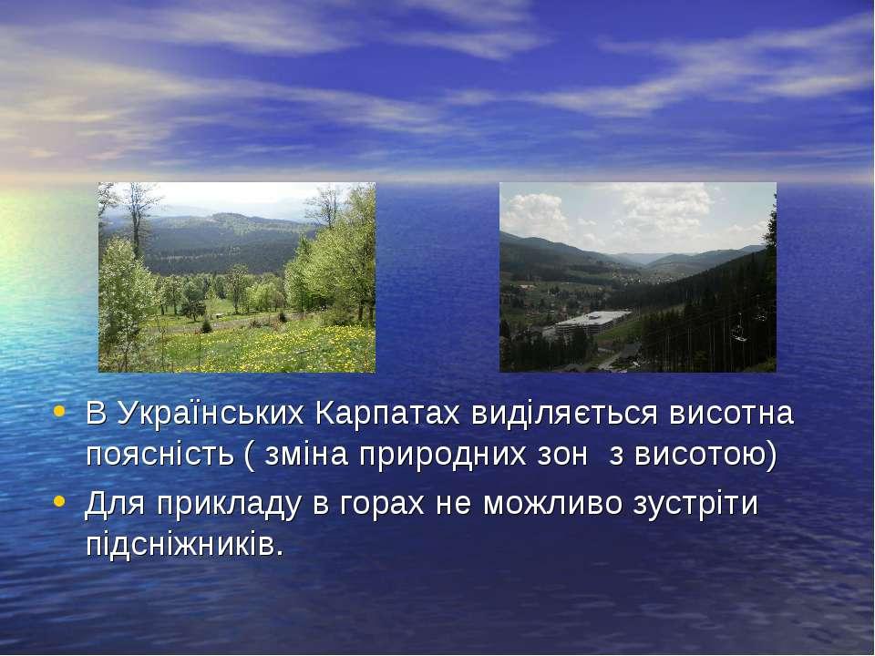 В Українських Карпатах виділяється висотна поясність ( зміна природних зон з ...