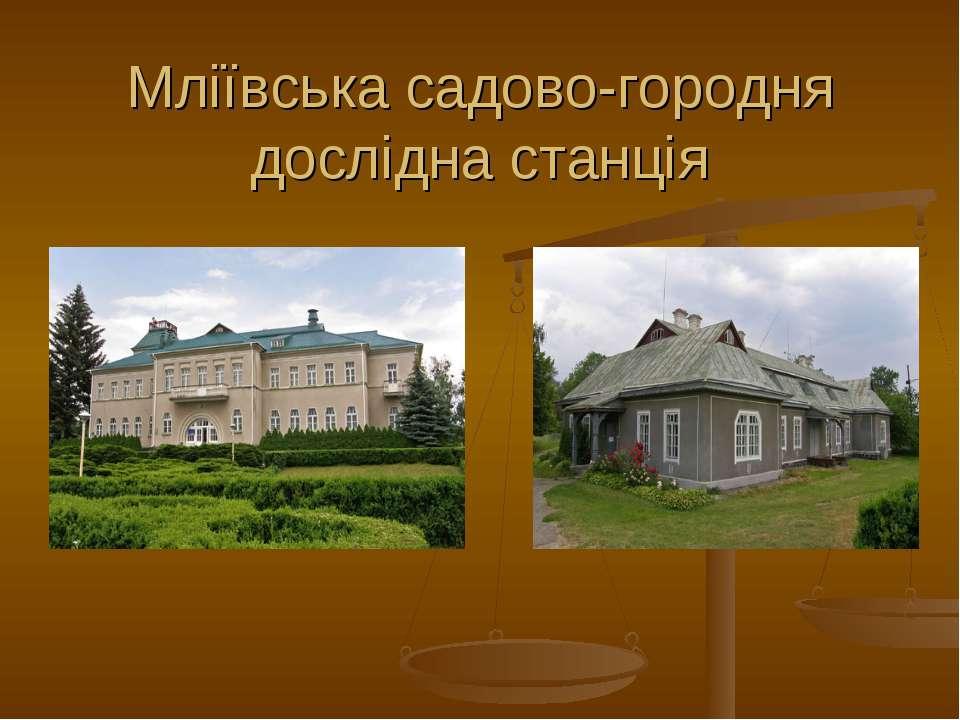 Мліївська садово-городня дослідна станція