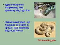 Удав constrictor, наприклад, має довжину від 3 до 4 м. Найменший удав - це пі...