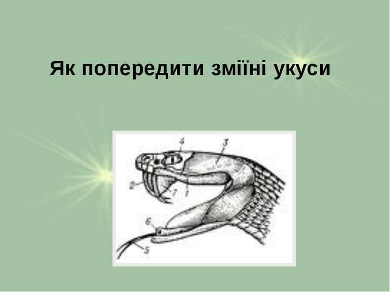 Як попередити зміїні укуси